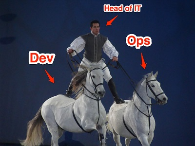 devops2 head-of-it-annotated 300
